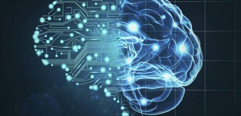Ученые нашли способ проверить, как и чему учится искусственный интеллект