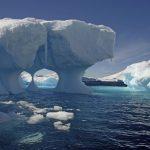Подо льдами Антарктики учеными найдены странные существа