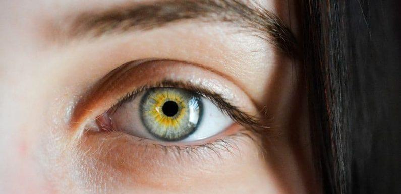 Размер зрачка может быть показателем уровня интеллекта человека