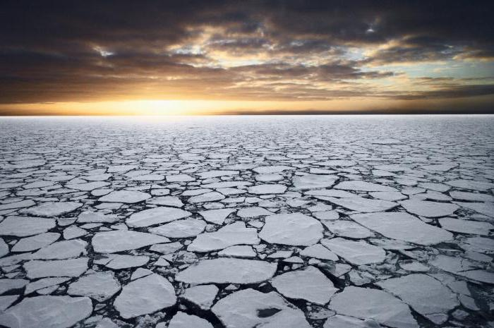 Паковый лед
