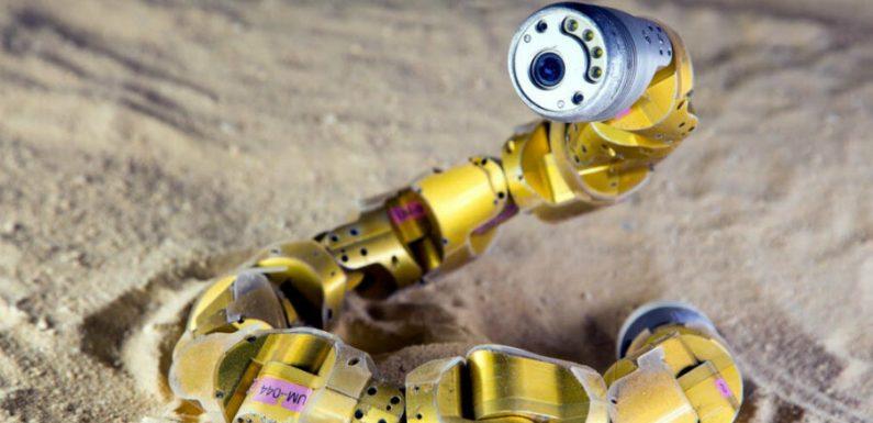 Созданы супер-эластичные червеобразные роботы, способные «чувствовать» свое окружение